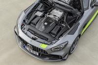 foto: Mercedes-AMG GT R PRO 2019_25.jpg