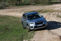 foto: Prueba Subaru Forester Eco Hybrid Executive Plus_07.JPG