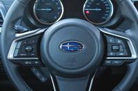 foto: Prueba Subaru Forester Eco Hybrid Executive Plus_19.JPG