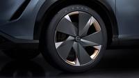 foto: Nissan Ariya Concept_15.jpg