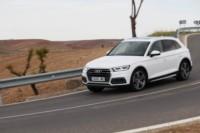 foto: 03 Prueba Audi Q5 2.0 TDI 190 quattro S tronic 2017.JPG
